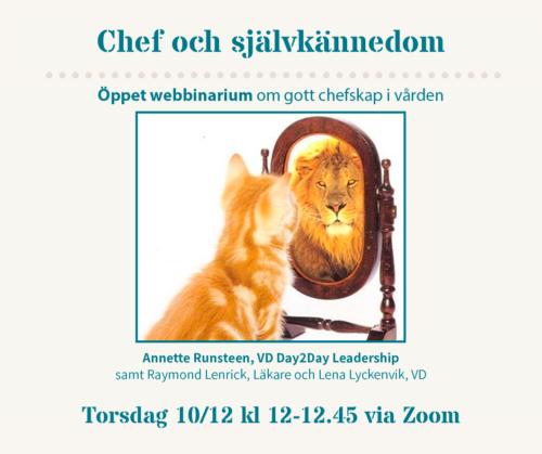 webbinarie_självkännedom_runsteen_lejon